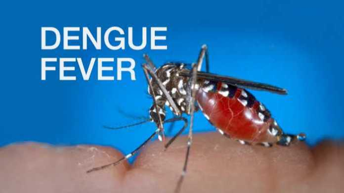 DENGUE FEVER OUTBREAKS LEAD TO AN OFFICIAL WARNING