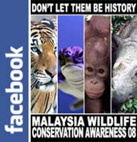 Malaysia Fighting to Save Endangered Wildlife