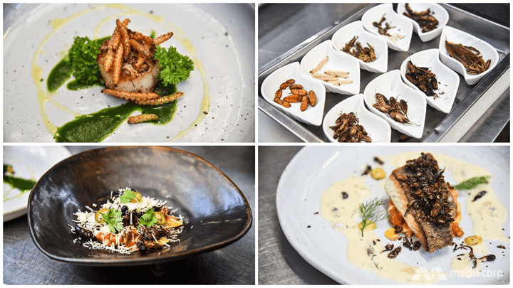 Five-star Edible Insects on the Menu for Thailand's Big Bug Business