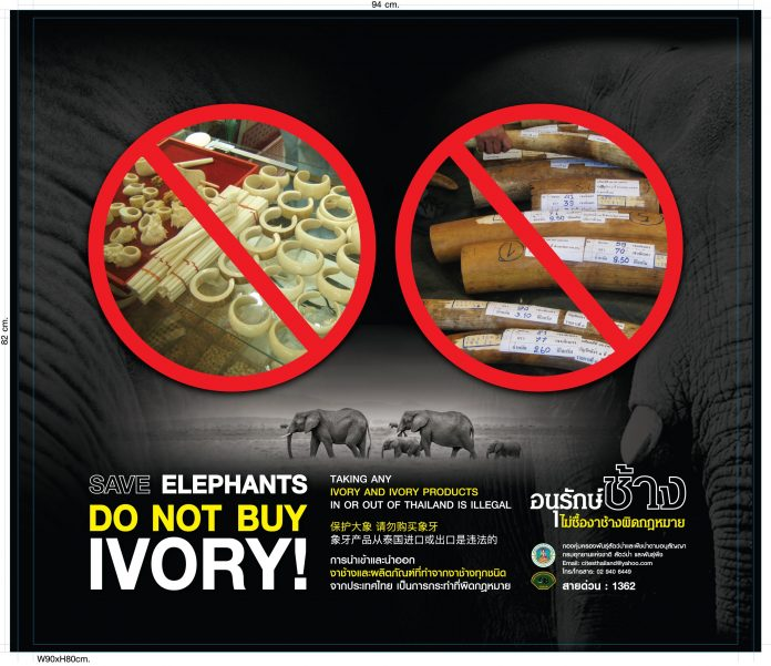 National Ivory Action Plan Achieves Its Objectives