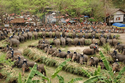 THE CHANGING RELATIONSHIP BETWEEN PEOPLE AND ELEPHANTS IN THAILAND