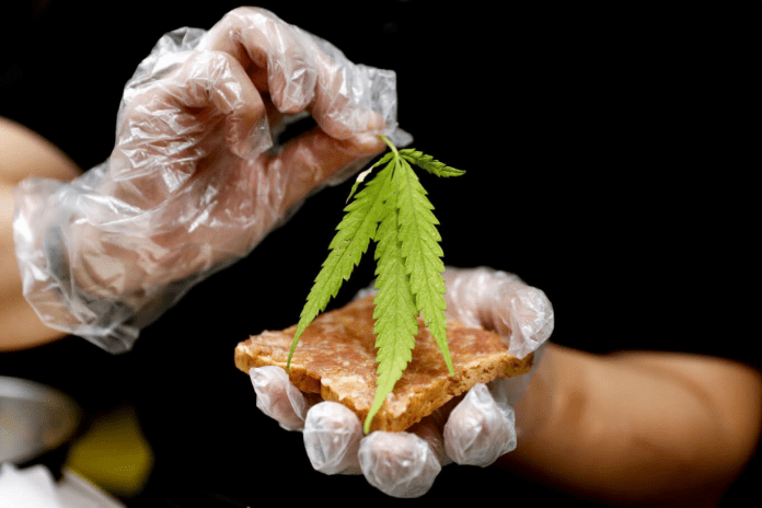 CULINARY CANNABIS NOW ON THE MENU