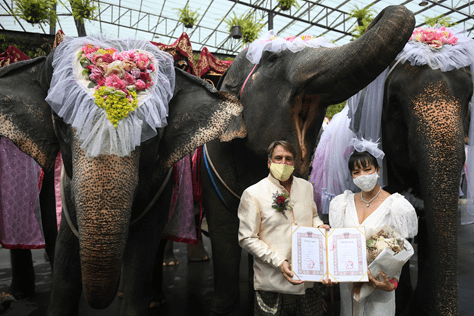 A VALENTINE'S WEDDING NEVER TO BE FORGOTTEN