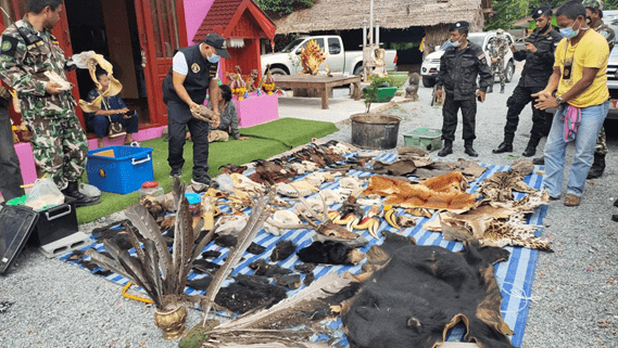 POLICING ANIMAL SMUGGLING; AN ONGOING NECESSITY FOR THE PROTECTION OF WILDLIFE